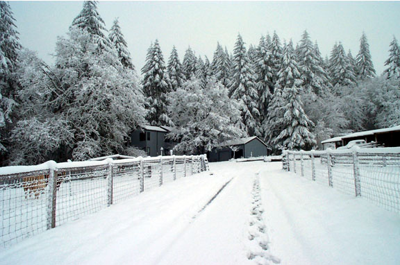 The ranch in the snow.