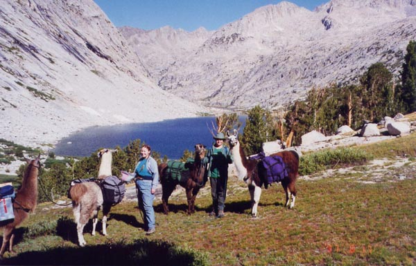 Melinda and Douglas with llamas above Upper Palisade Lake